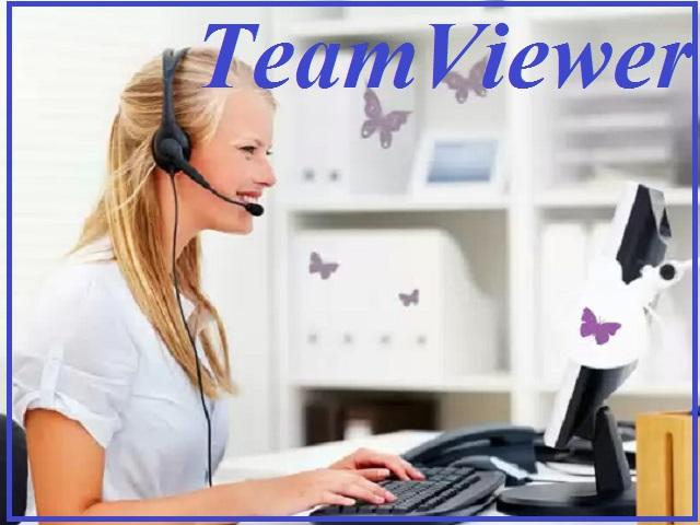 как настроить программу Team Viewer в Windows и Linux
